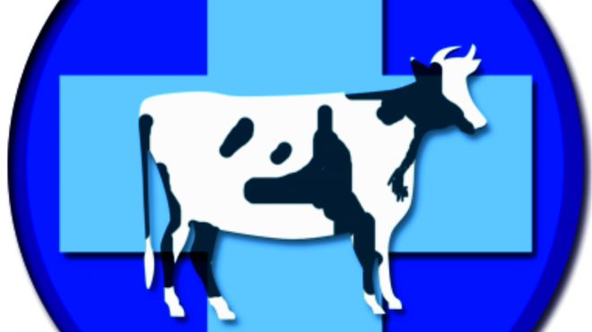 Лицензия на производство ветеринарных препаратов