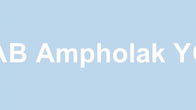 Ampholak YCE